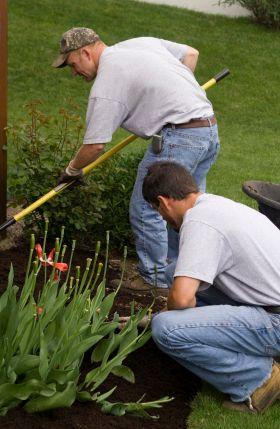 Landscapers Insurance
